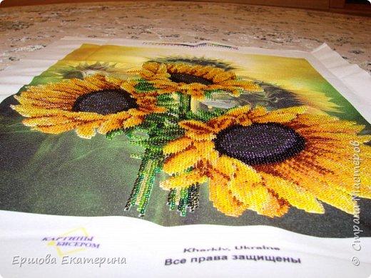 Картина бисером, частичная вышивка, с нанесенным рисунком на канву. Производитель Украина Картины бисером. Готовая работа получилась внушительных размеров. Размер с рамкой 47 на 57 см. фото 18