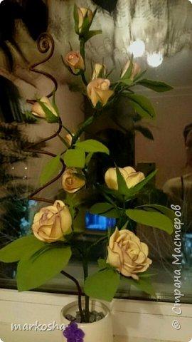 Второй вариант композиции Роза и Соловей, сделано по аналогии.Хотела сделать две розы в одном кашпо, но как-то ляписто бы получилось.Сделала их по одной.При заливке алебастром горшочек треснул, задекорировала полимерной глиной. фото 2