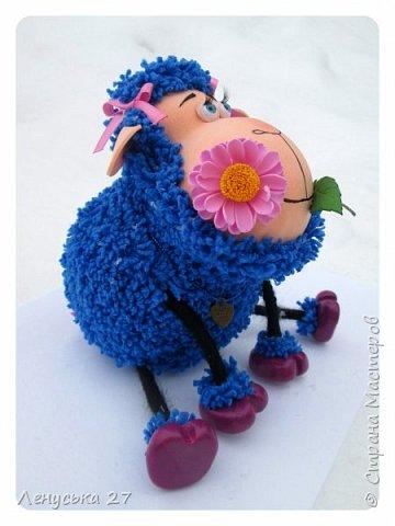 Запоздалые овечки фото 2