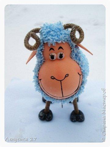Запоздалые овечки фото 4