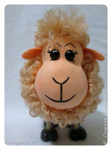 Запоздалые овечки фото 5