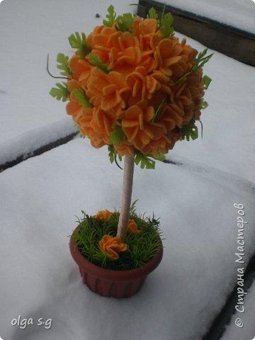 Апельсинка  фото 1