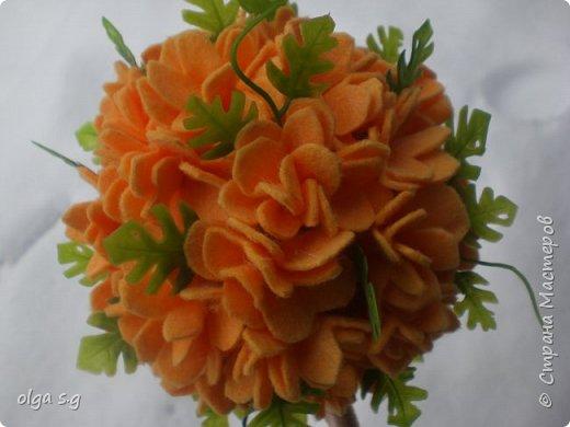 Апельсинка  фото 2