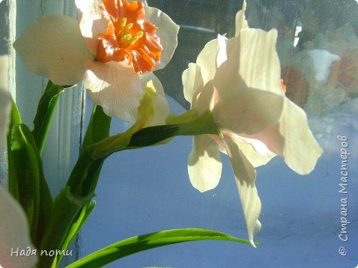 Захотелось слепить такие цветочки.Серединки конечно ярковаты,но в картинках нашла и такие. фото 2