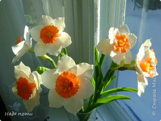 Захотелось слепить такие цветочки.Серединки конечно ярковаты,но в картинках нашла и такие. фото 1
