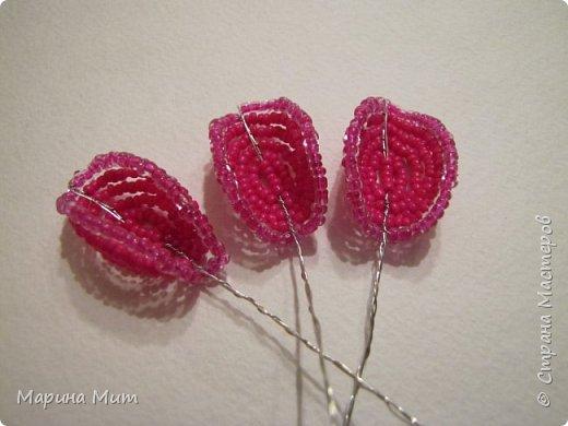 Мастер-класс Бисероплетение Мои прекрасные розы Бисер фото 22