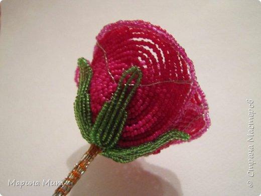 Мастер-класс Бисероплетение Мои прекрасные розы Бисер фото 28