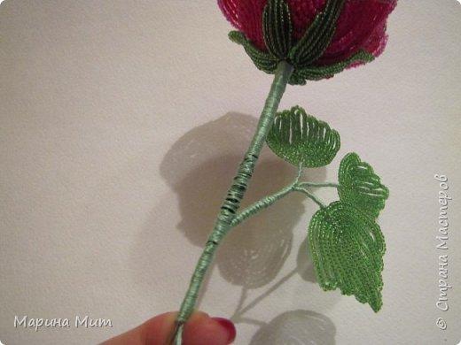 Мастер-класс Бисероплетение Мои прекрасные розы Бисер фото 30
