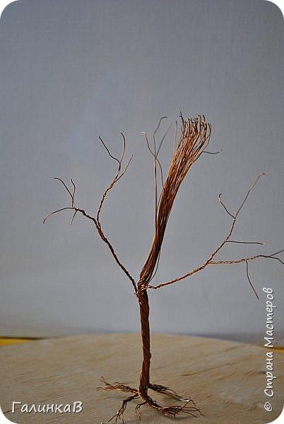 Здравствуйте дорогие мастерицы! Сегодня представляю вам как сделать макеты деревьев своими руками. Никогда не думала, что мне придется этим заняться. Дело в том, что такие деревья заказал мне папа, который занимается изготовлением макетов Храмов и церквей. Пообещать пообещала, а как делать - не знаю! Но обещание дано - надо выполнять. Нашла видео и приступила к работе. Видео, по которому я делала свои деревья можно посмотреть здесь - http://yandex.ru/video/search?filmId=1IwlFm7AUXI&text=%D0%BC%D0%B0%D0%BA%D0%B5%D1%82%D1%8B%20%D0%B4%D0%B5%D1%80%D0%B5%D0%B2%D1%8C%D0%B5%D0%B2. Решила и вам показать как я их делала, тем более, что очень часто или в школе или в детском саду просят сделать какую-либо поделку на ту или иную тему и тогда мой МК и видео автора наверняка помогут вам в этом деле. фото 12