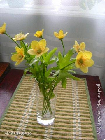 Смотрела картинки на Яндекс и нашла вот такие полевые цветочки. фото 4