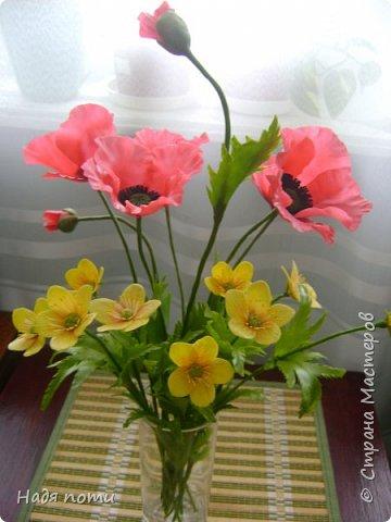 Смотрела картинки на Яндекс и нашла вот такие полевые цветочки. фото 9