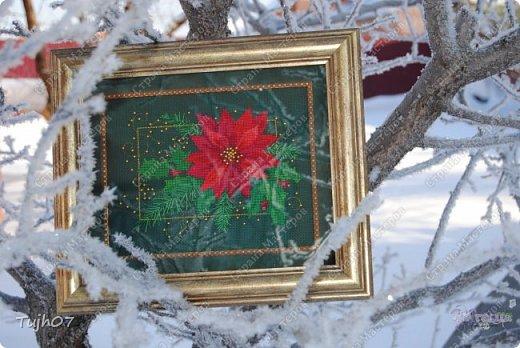 Картина панно рисунок Поделка изделие Новый год Вышивка крестом Красота-то какая  Бусины Канва Нитки фото 1