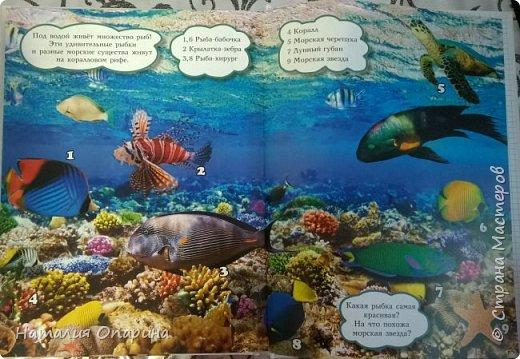Сегодня с сыном читали книжку про морских обитателей. И пришла мне в голову идейка, а не показать ли ребенку кусочек моря. Ракушку куплены в магазине фикспрайс. В тазик насыпала ракушек, мы их изучали, трогали, потом сын принес рыбок.  фото 2