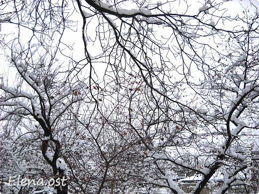 Зима радует в этом году. Мороз, пушистый белый снег... И мы с супругом непременно спешим запечатлеть мою очередную вязаную вещь на фоне зимней природы. Туника связана из пряжи Alize Cashmira - 600 г, спицы № 3.  фото 5