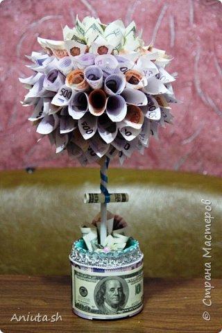 Ещё одно денежное дерево фото 4