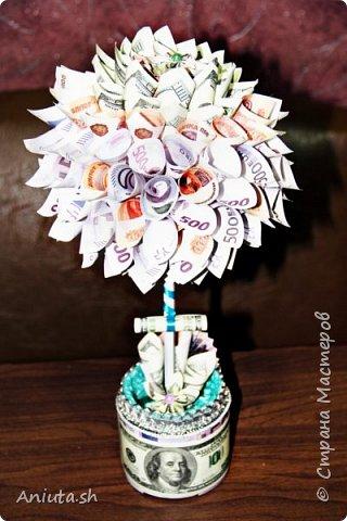 Ещё одно денежное дерево фото 1