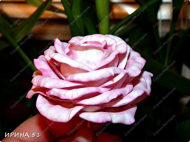 Мастер-класс Флористика искусственная Моделирование конструирование МК Чайно-гибридная роза из фоамирана Фоамиран фом фото 1