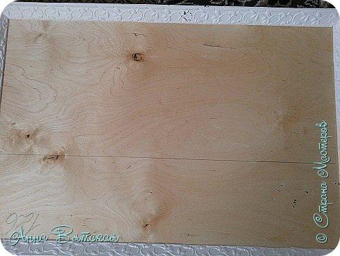 Картина панно рисунок Мастер-класс Лепка Моделирование конструирование Долгострой как я его делала Гипс Краска Тесто соленое фото 16