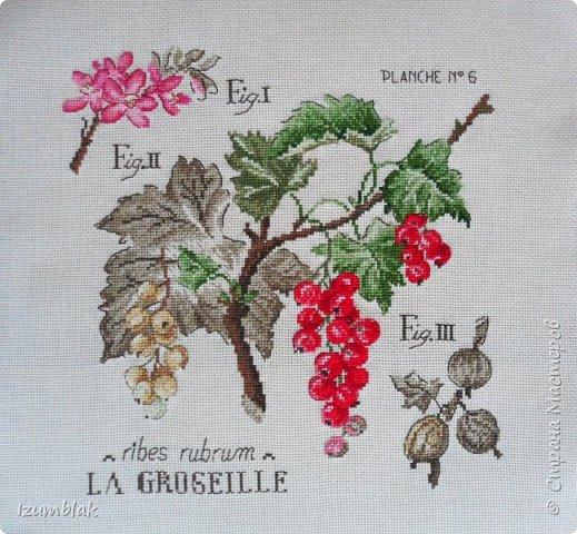 """Это вторая моя работа из """"ботанической"""" серии Véronique Enginger."""
