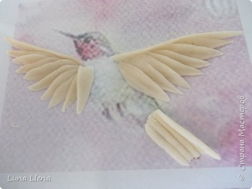 Мастер-класс Лепка Яркий эльф тропического утра Колибри Тесто соленое фото 13