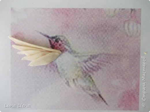 Мастер-класс Лепка Яркий эльф тропического утра Колибри Тесто соленое фото 6
