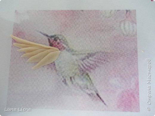 Мастер-класс Лепка Яркий эльф тропического утра Колибри Тесто соленое фото 7