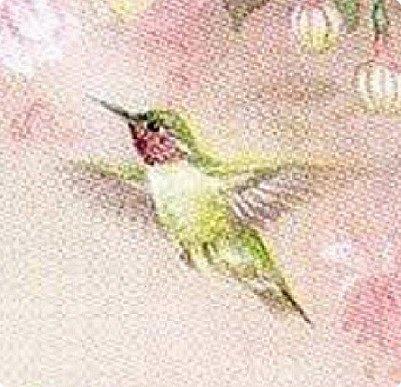Мастер-класс Лепка Яркий эльф тропического утра Колибри Тесто соленое фото 2
