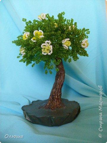 Мои работы.Первое дерево.