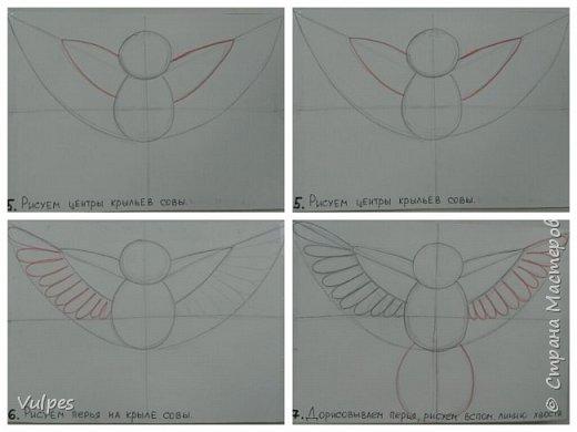 Рисовали с детками подготовительной группы сказочную сову. Сначала на белом листе делали набросок совы (по схеме) простым карандашом, потом обводили и рисовали узоры на крыльях черной гелевой ручкой (карандаш потом стирали). Сову вырезали и наклеили на лист цветной акварельной бумаги, дорисовывали белой гелевой ручкой. Это моя совушка: фото 9