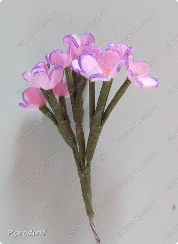Сирень! Мое любимое весеннее растение! Как давно мне хотелось сделать ее.Но лепить ее из холодного фарфора или из соленого теста я не решалась. А из фоамирана попробовала. В прцессе подготовки нашла два сайта: здесь о сборке http://www.handworker.ru/interyter/iskusstvennye_cvety_siren/  , а здесь шаблоны цветов  http://kk.convdocs.org/docs/index-188823.html фото 19