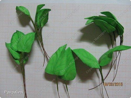 Сирень! Мое любимое весеннее растение! Как давно мне хотелось сделать ее.Но лепить ее из холодного фарфора или из соленого теста я не решалась. А из фоамирана попробовала. В прцессе подготовки нашла два сайта: здесь о сборке http://www.handworker.ru/interyter/iskusstvennye_cvety_siren/  , а здесь шаблоны цветов  http://kk.convdocs.org/docs/index-188823.html фото 26