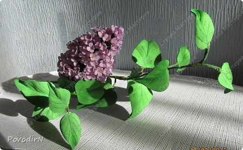 Мастер-класс Флористика искусственная Моделирование конструирование Сирень из фоамирана Фоамиран фом фото 31