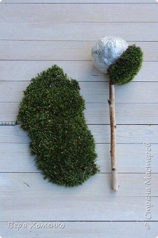 Пришла весна,хочется ей немного помочь,сделать зеленый дом для птичьего гнездышка.   фото 4