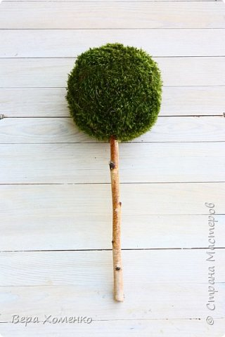 Пришла весна,хочется ей немного помочь,сделать зеленый дом для птичьего гнездышка.   фото 5
