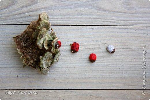 Пришла весна,хочется ей немного помочь,сделать зеленый дом для птичьего гнездышка.   фото 10