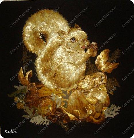Белка, или как ее называли еще славяне векша, урма или мысь – это мелкий лесной зверек. Из-за своих крепких зубов, как и другие грызуны – зайцы, кроты, мыши и крысы - является зверем бога Перуна. Белки с легкостью разгрызают орехи и желуди – словно трещат камни и расщепляются деревья от молний, проводят аналогию древние.  фото 3