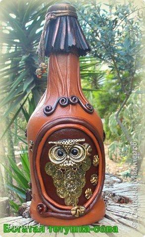 Декор предметов Аппликация Богатая тетушка-сова Бутылки стеклянные Камень Кожа Металл фото 1