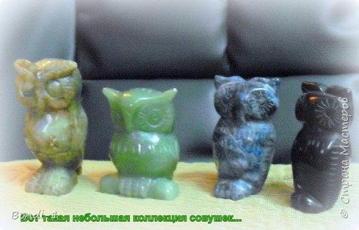 Декор предметов Аппликация Богатая тетушка-сова Бутылки стеклянные Камень Кожа Металл фото 6