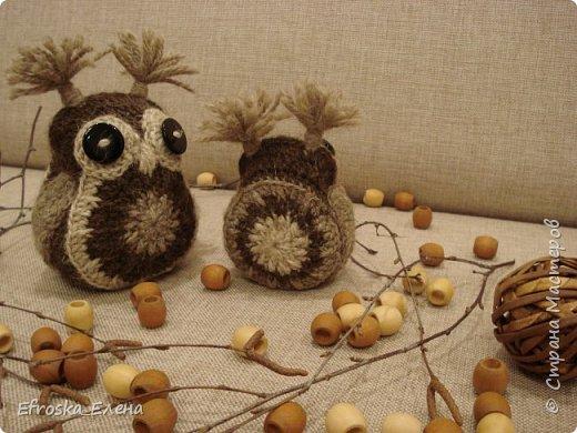 По  МК Юли (Iulga) http://www.liveinternet.ru/users/iulga/post298907098/  связались у меня совушки. Маленькая - полностью по МК, а вот большая... Прибавила всего один лишний ряд, а она получилась намнооооого больше! Пряжа в точности, как у Юли, набиты зернами кофе, глаза - пуговицы. фото 4