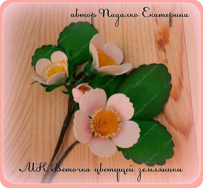 Мастер-класс МК  Веточка цветущей земляники Фоамиран фом фото 1