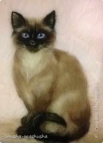 Шерстяная живопись. Кошка Бася. Поэтапность работы фото 1