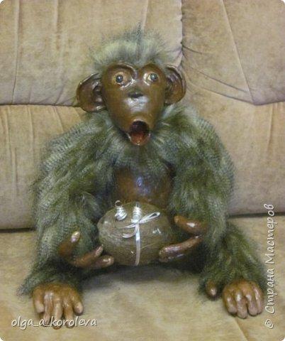 Вот такая слепилась обезьянка с настоящим кокосовым орехом!