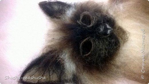 Шерстяная живопись. Кошка Бася. Поэтапность работы фото 13