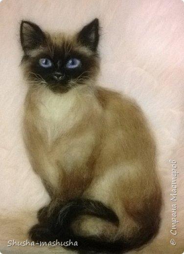 Шерстяная живопись. Кошка Бася. Поэтапность работы фото 15