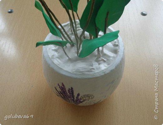Расскажу как я делала вот такой цветок . Для его создания нужен фоамиран розовый и зелёный. Горшочек,  проволока, тейп-лента, пенопласт, гипс, супер клей или клеевой пистолет. фото 9