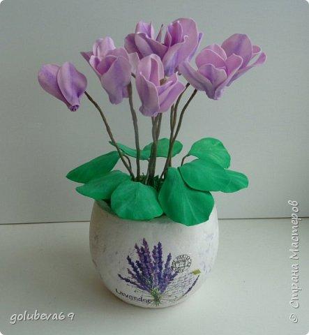 Расскажу как я делала вот такой цветок . Для его создания нужен фоамиран розовый и зелёный. Горшочек,  проволока, тейп-лента, пенопласт, гипс, супер клей или клеевой пистолет. фото 1