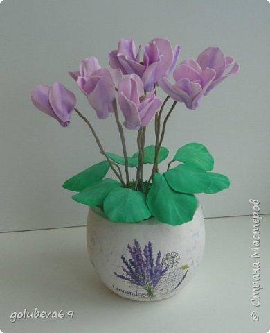 Расскажу как я делала вот такой цветок . Для его создания нужен фоамиран розовый и зелёный. Горшочек,  проволока, тейп-лента, пенопласт, гипс, супер клей или клеевой пистолет. фото 11