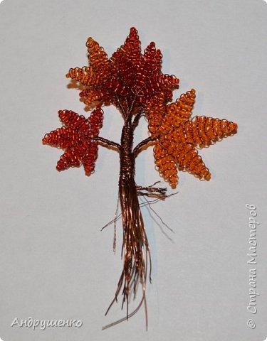 Доброго времени суток. Хочу показать Вам, как я делала Осенний клен. Высота дерева 20 см. фото 15