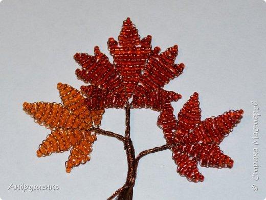 Доброго времени суток. Хочу показать Вам, как я делала Осенний клен. Высота дерева 20 см. фото 19