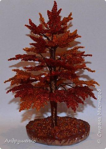 Доброго времени суток. Хочу показать Вам, как я делала Осенний клен. Высота дерева 20 см. фото 2